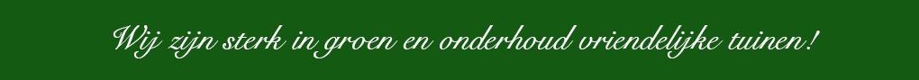 Nico en Willem Hoveniers Zuidhorn Sterk in Onderhoudsvriendelijke tuinen